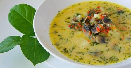 сирний суп з грибами рецепт приготування