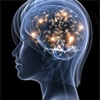 людина використовує більше 10 % мозку