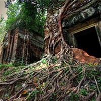 нові технології допомогли знайти древнє місто в камбоджі