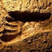 у мексиці знайшли сліди стародавньої людини