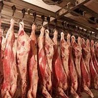 нова технологія дозволить визначати свіжість м'яса