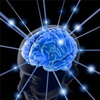 психологи винайшли швидкий тест для визначення iq