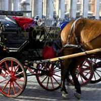в центрі нью-йорка коней збираються замінити на електромобілі