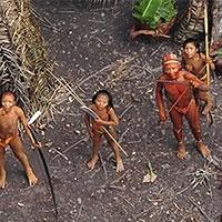 у бразилії виявлена група індіанців, вперше вступила в контакт з цивілізацією