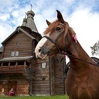 для людей з «кінськими» прізвищами вхід на «свято коні» в новгороді буде безкоштовним
