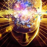 виявлена зона мозку, що дозволяє людині оцінювати свої дії