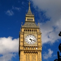 британка зловила служби зайнятості на халатність