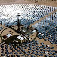 «зелена» електростанція вбиває птахів