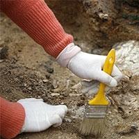 намисто, виявлені в печері ксара акіл, спантеличили учених