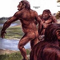 двигуном еволюції була боротьба за джерела