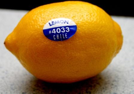 лимон с наклейкой фото