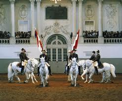 Австрія.Чи ходять коні в школу?