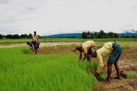 Що являє собою державу Бангладеш?