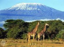 Кіліманджаро   «гора, яка блищить»