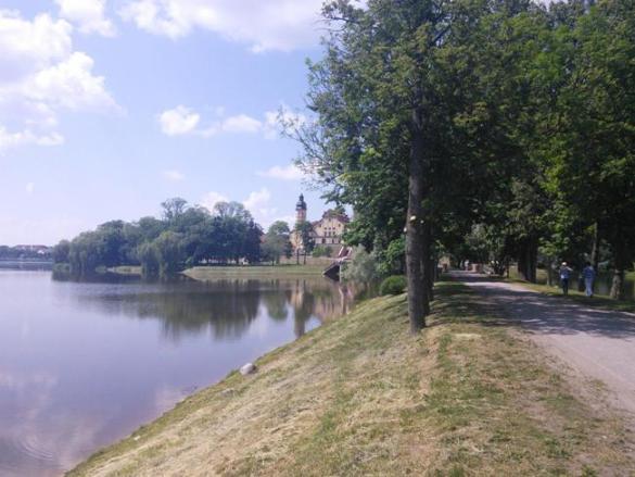 Несвижський замок в Білорусі (фото)